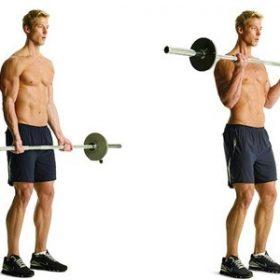 Bài tập thể dục tổng hợp